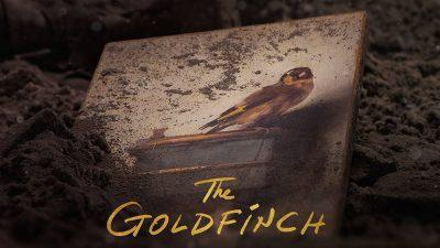 goldfinchheader 400x225 - أعلى 5 أفلام مشاهدة في سينما الكويت وأحدث الأفلام لهذا الأسبوع