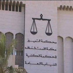 """مصر تدعو لاجتماع طارئ لجامعة الدول العربية لبحث """"العدوان التركي"""" على سوريا"""