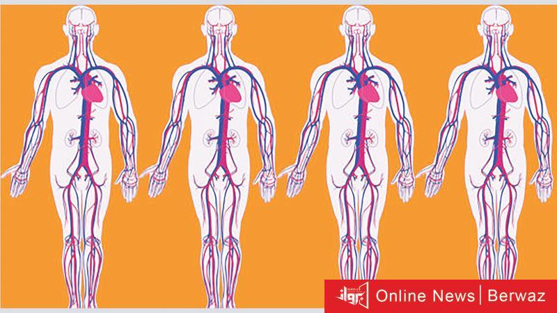 خرائط جوجل - تطوير خرائط جوجل لإستكشاف جسم الإنسان