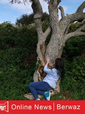 british woman married tree 3 300x400 - بريطانية تحتفل بعيد زواجها من شجرة