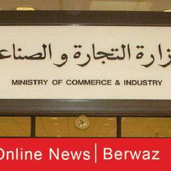 الهيئة العامة للقوى العاملة تكشف عن قرارات هامة حول دعم العمالة الوطنية
