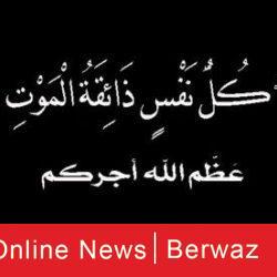 شيخ الأزهر: وصف المسلمين بالإرهابيين خدعة صدقها كثيرون منهم مسلمون