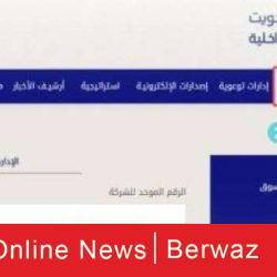 السعودية تعلن حريق في طائرة مدنية بعد استهداف ميليشيا الحوثي مطار أبها