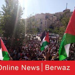 cats 3 250x250 - هاشتاج #يلا_على_الحدود  يجمع الاف الأردنيين في مظاهرات تضامنية أردنية على الحدود الفلسطينية