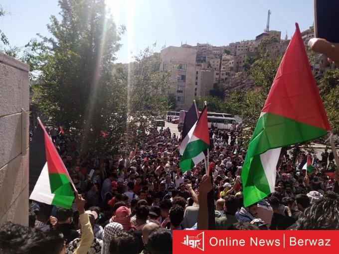 cats 3 - هاشتاج #يلا_على_الحدود  يجمع الاف الأردنيين في مظاهرات تضامنية أردنية على الحدود الفلسطينية