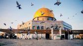 الأردن: نرفض أي تصريحات تمس الوضع القائم في القدس