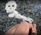 ضبط أكبر شحنة مخدرات في العالم قيمتها نصف مليار يورو