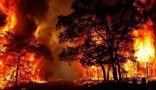 إعلان حالة الطوارئ بأستراليا بسبب الحرائق والإرتفاع القياسي بدرجات الحرارة