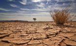 الجفاف يجتاج كوريا الشمالية وكارثة إنسانية في الأفق !