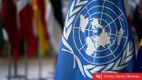 الأمم المتحدة تكشف عن عدد الإرهابيين الأجانب في سوريا والعراق